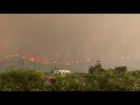 Φωτιά ΤΩΡΑ: Το πύρινο μέτωπο κινείται πάνω από τα διόδια Αφιδνών - Έκλεισε η Εθνική Οδός Αθηνών - Λαμίας