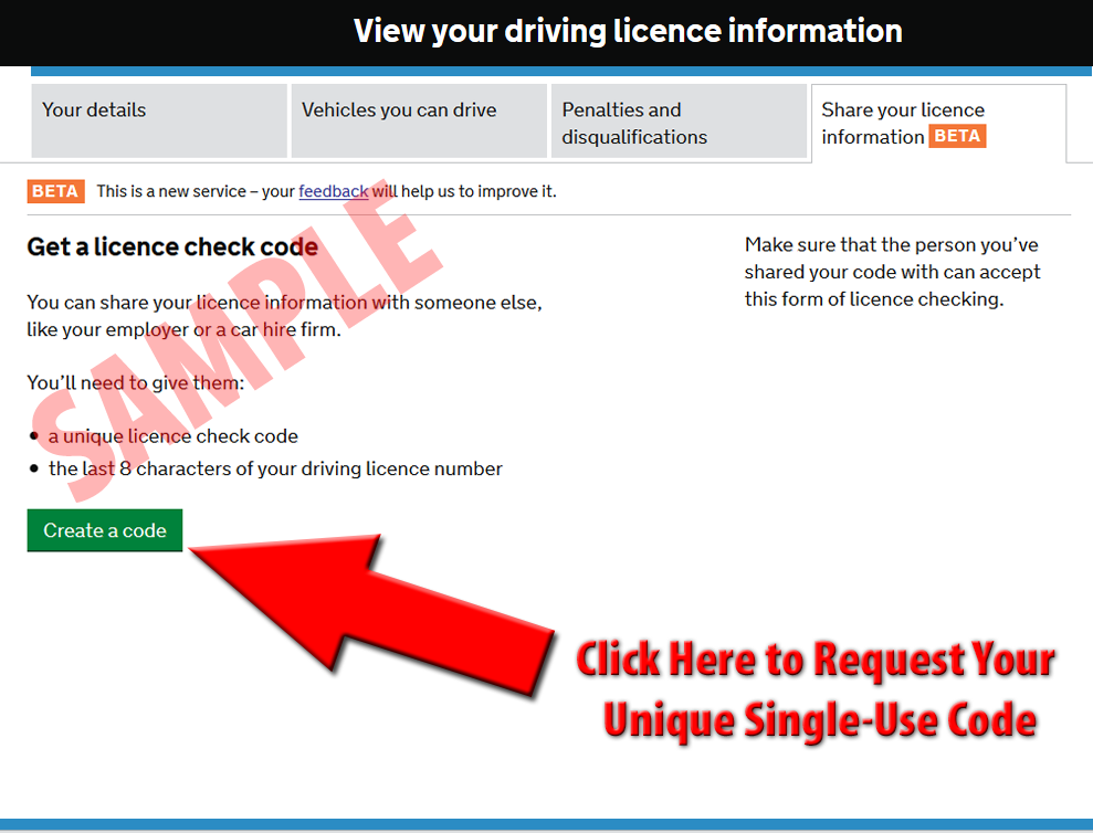 Driving Licence Check Explanation Pic 02