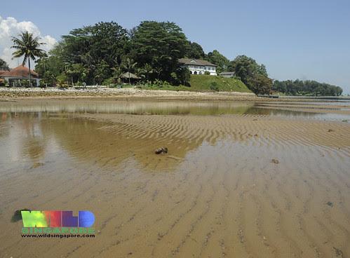 Sand flats of Berlayar Creek at Bukit Cermin