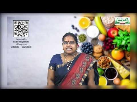 11th Bio Chemistry அலகு 3 புரதங்கள் Kalvi TV