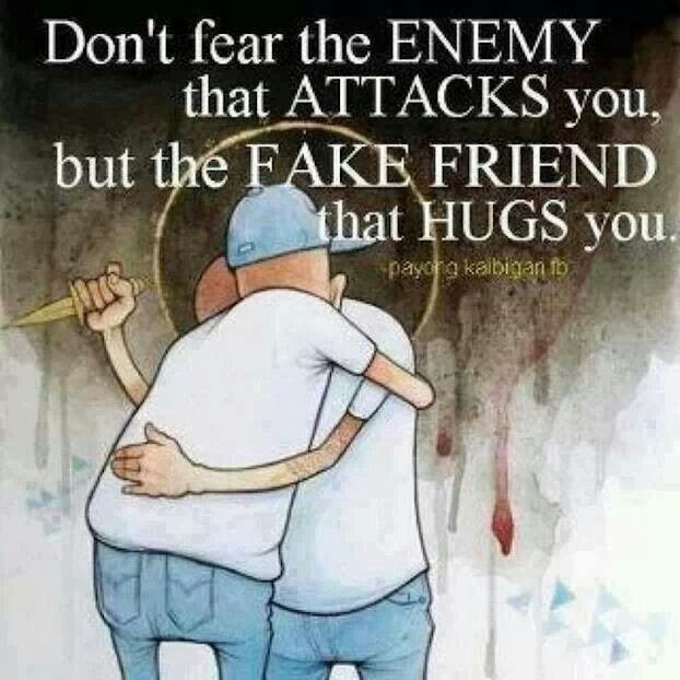 Fake Friends Are Like Wolves In Sheeps Clothing Picture Quotes