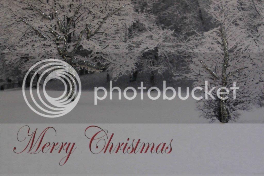 silver glitter photo cardwithsilverg-1.jpg