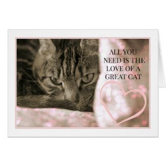 All You Need Is The Love of a Great Cat Card