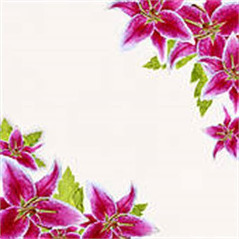 Lilies Stock Illustrations   Royalty Free   GoGraph
