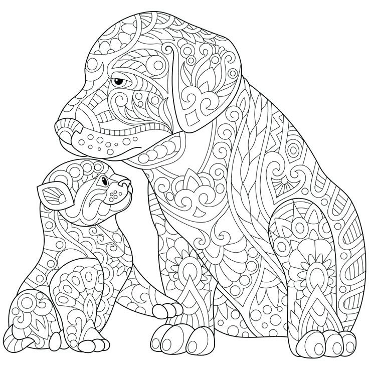 Coloring Pages For Adults Cats at GetDrawings | Free download