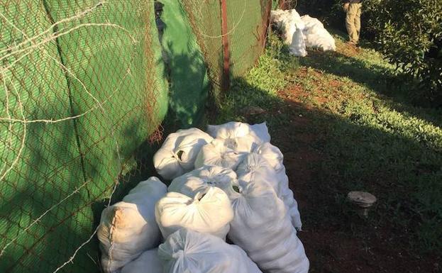 Un agricultor frustró un robo al sorprender a los ladrones./SUR