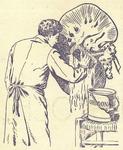 Ilustração Portugueza, Nº 904, Junho 16 1923 - 2b