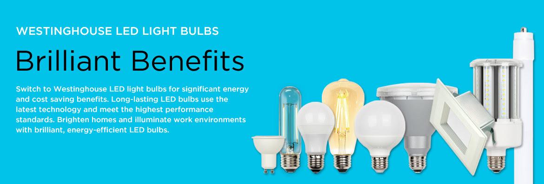 Led Light Bulb Led Lamps Led Lighting