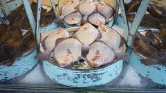 fish market ostende