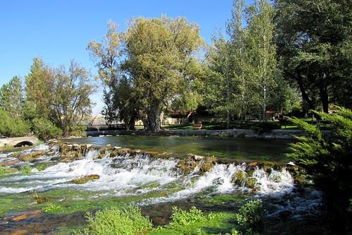 IMG_5856_Giant_Springs_Great_Falls_MT
