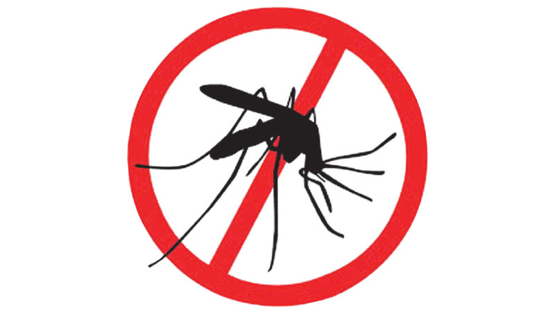 Fifteen dengue deaths upto March end