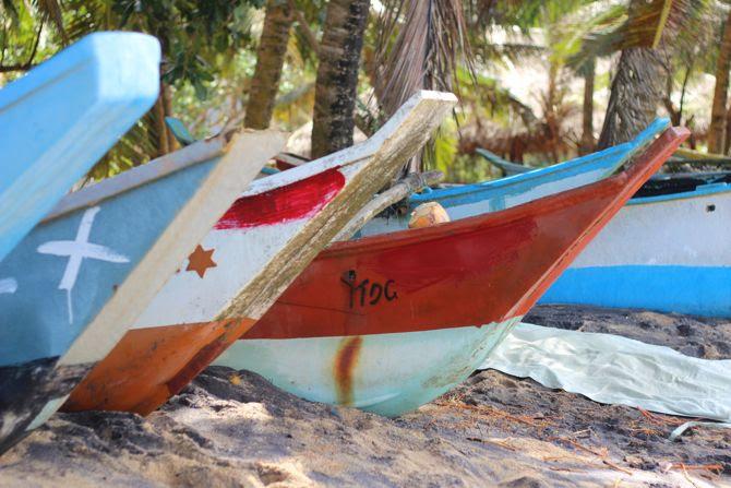 photo 8-combi billabong womens_combishort-palmiers-srilanka-mirissa_zpsrv4zq79n.jpg