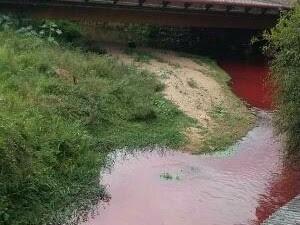 Rio Cachoeira teve a água manchada de vermelho (Foto: Ednilson Rafael/Vanguarda Repórter)