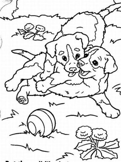 Dibujo De Perritos Jugando En El Parque Dibujo Para Colorear De