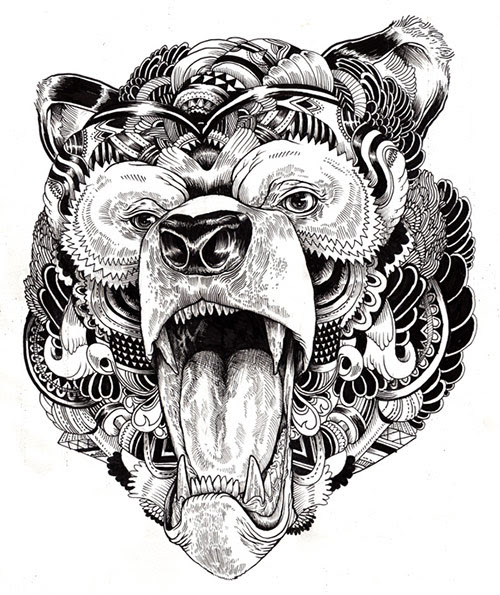 09 AnimalDrawing in Incredibly Amazing Animal Illustrations by Iain Macarthur