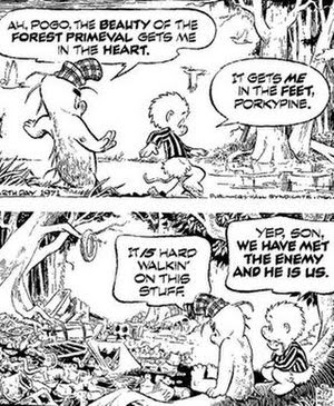 Pogo daily strip from Earth Day, 1971.