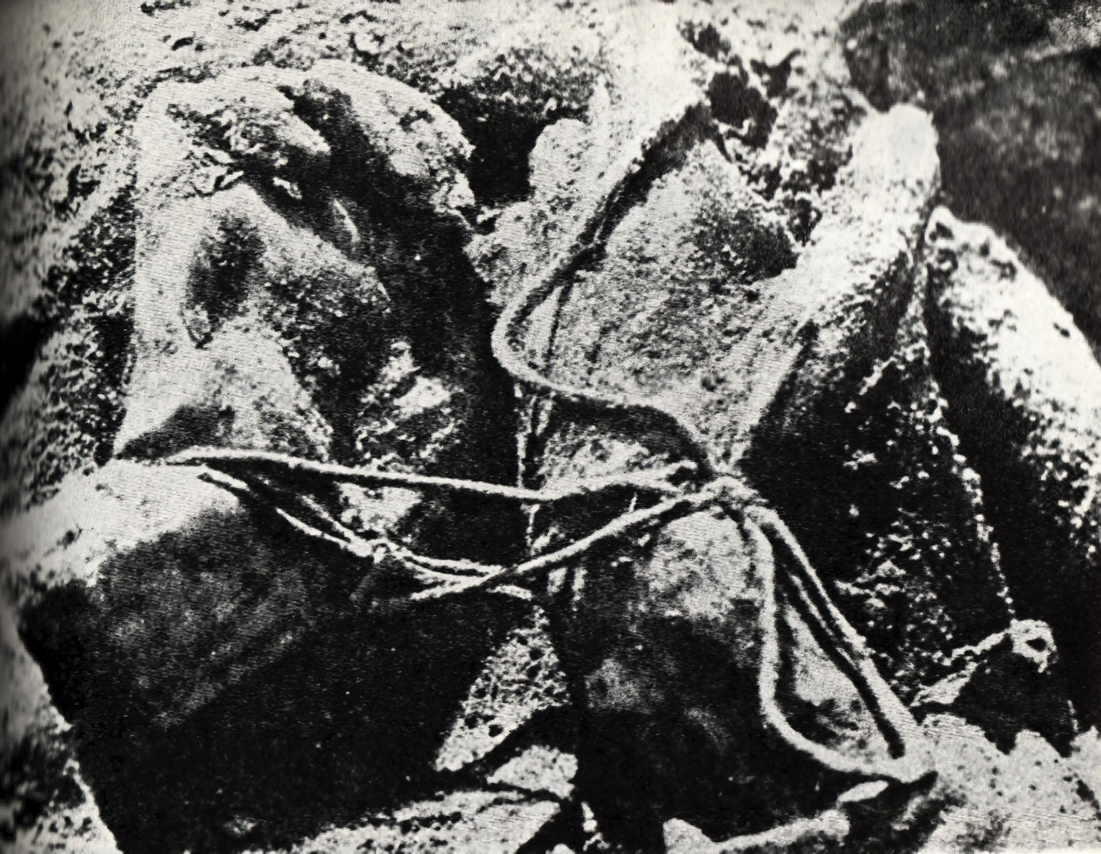 http://upload.wikimedia.org/wikipedia/commons/8/8c/Katyn_massacre.jpg