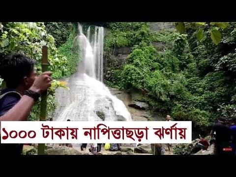 Travel Napittachora Waterfall   নাপিত্তাছড়া ঝর্না যাওয়ার উপায় । বান্দরখুম,বাঘবিয়ানি,কুপিকাটাখুম