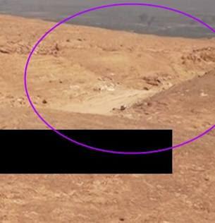 Gli studi di Higgins:«Foley ucciso a  sud di Raqqa»