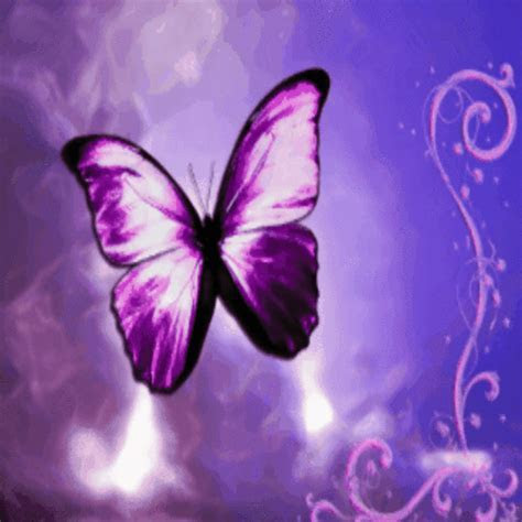 A Butterfly Luck For My Love. Free Butterfly Day eCards