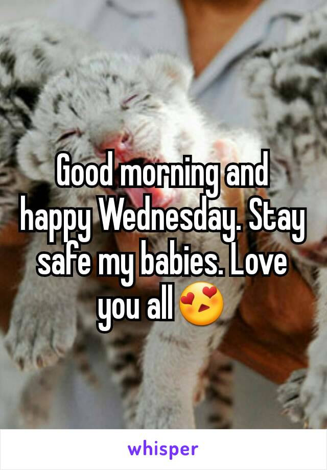Good Morning And Happy Wednesday Stay Safe My Babies Love You All