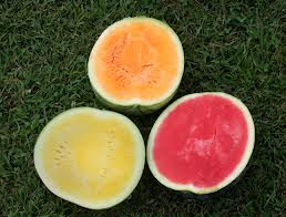 watermelonvarieties