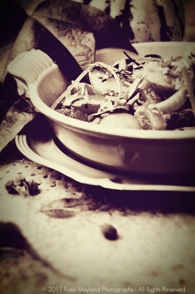 Potato Salad 16 6 bis