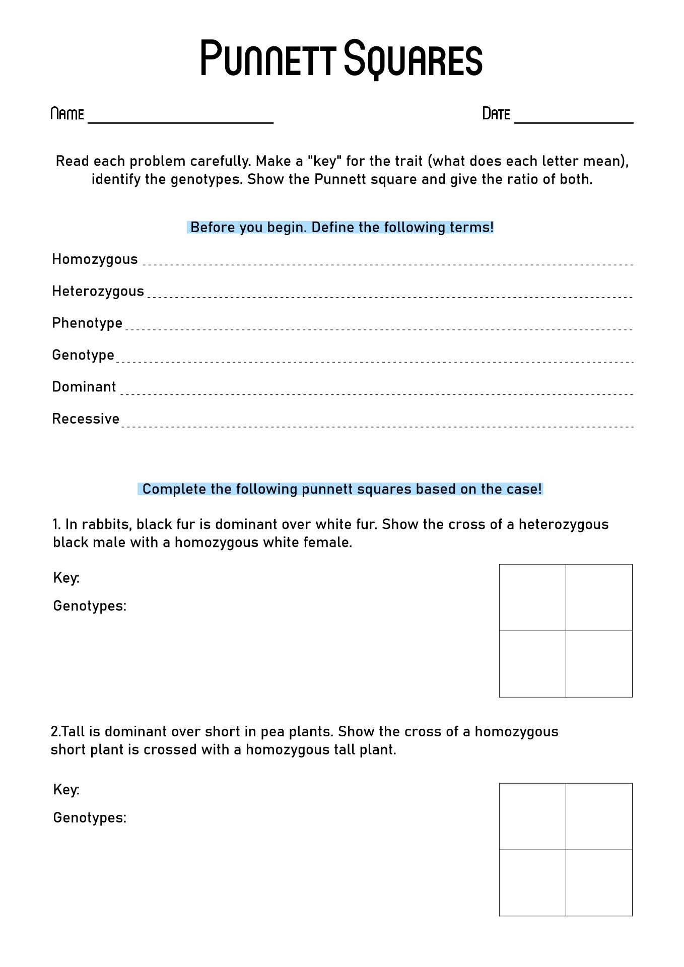 35 Punnett Square Worksheet 1 Answers Worksheet Project List