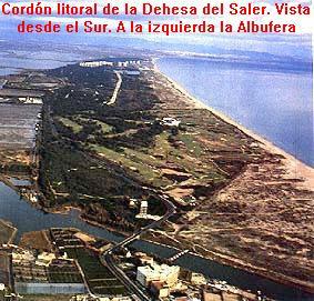 franja litoral de la Devesa