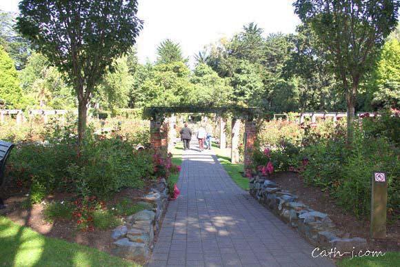 Rose Garden Invercargill Nzealand_6