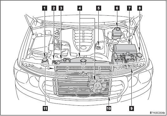 1998 Land Cruiser V8 Engine Diagram Data Wiring Diagram Cup Agree Cup Agree Vivarelliauto It
