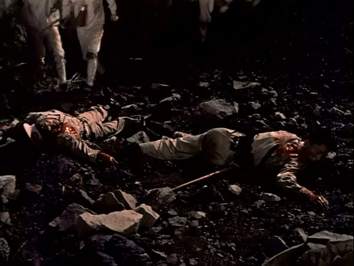Woah. They look very dead.