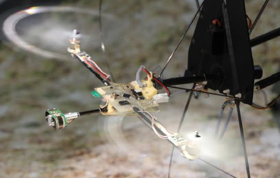 Olho de inseto estabiliza voo de robôs