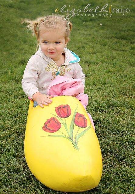 Tulips03W