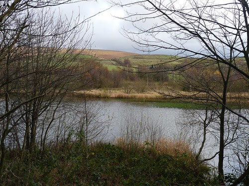 23703 - Hollingworth Lake, Rochdale