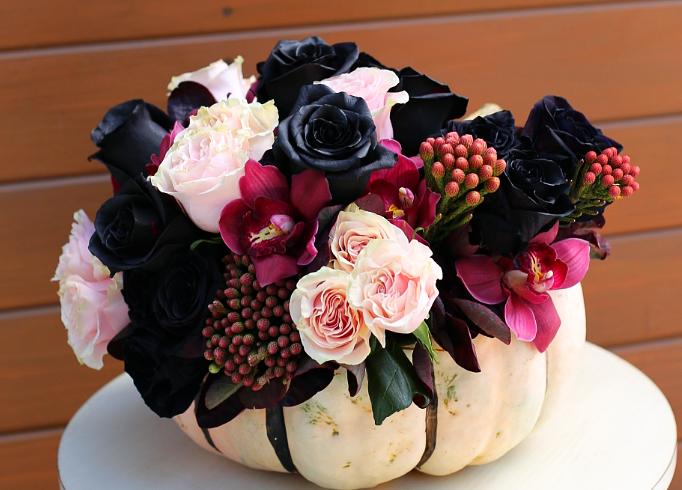 Do Black Roses Exist Orchidrepublic