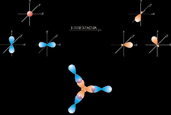 sp2-hibridizacija