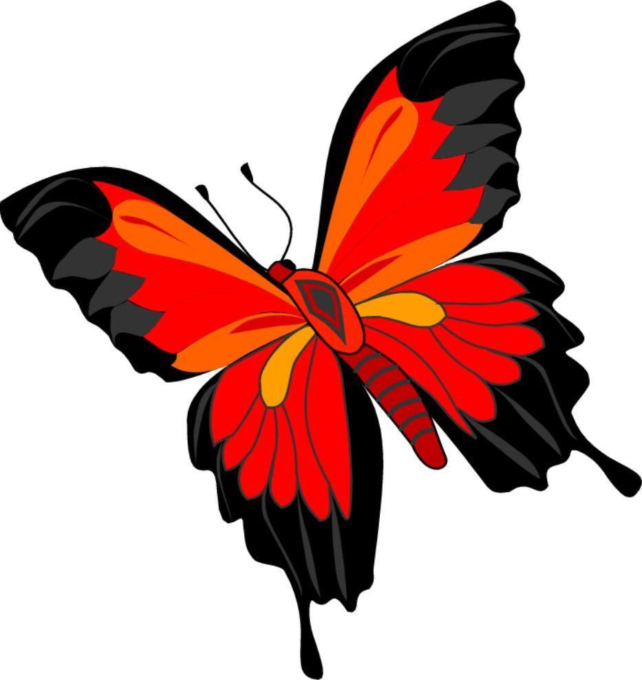 Mariposa Roja Imágenes Y Fotos