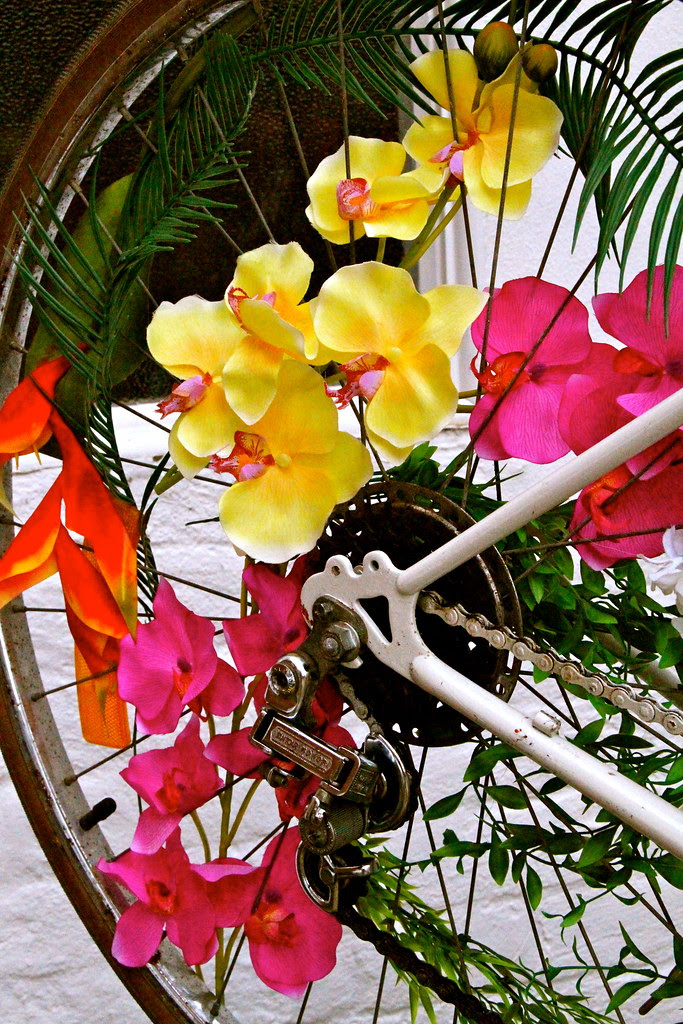 the happy bike 8612