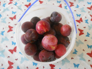 2016 Orchard Plums