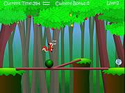 Jogar Squirrel balance Jogos