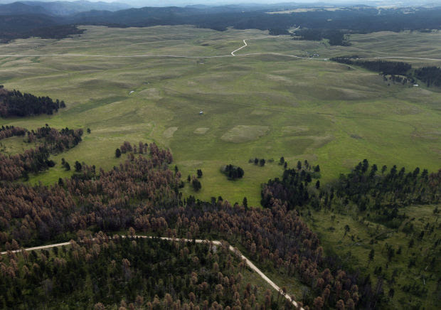 "Native American tribes have finalized the purchase of 437 acres of land north of Deerfield Lake  that is part of the property known as Pe'Sla. The land purchase adds to the 1,900 acres  purchased in 2012. Pe'sla is a sacred area considered by the Lakota  as the ""center and heart of everything.""  Image is Courtesy of The Rapid City Journal."