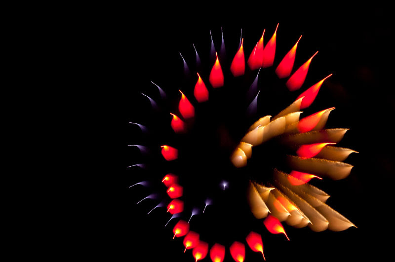 fireworks photography 4
