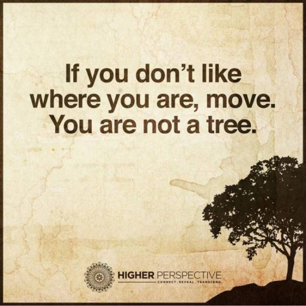 If You Dont Like Where You Are Move You Are Not A Tree Pictures