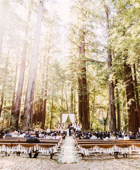 Redwood Forest Wedding   Benj Haisch Photography