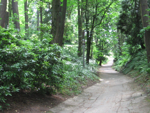 wp_path