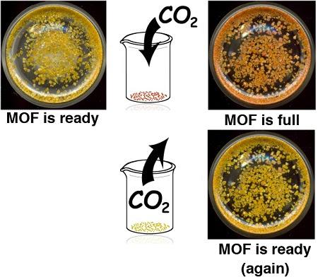 Renewable Carbon Dioxide Sponge