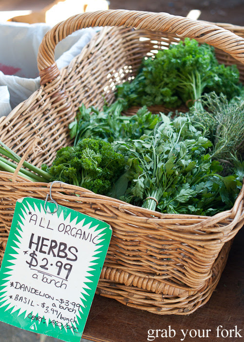 Dandelion, basil and parsley herbs at Frenchs Forest Organic Food Market