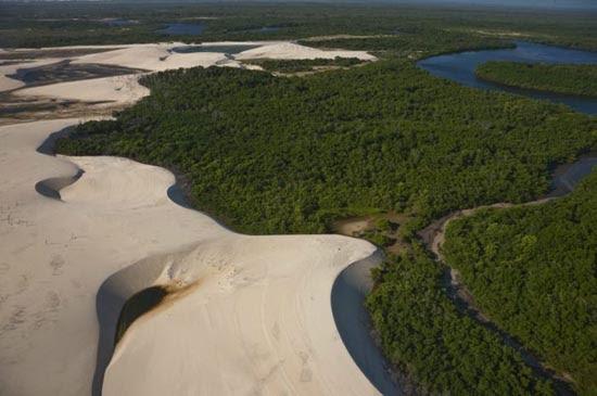Εντυπωσιακοί αμμόλοφοι στην Βραζιλία (5)