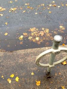 Bike Parking - Leaves clogging sewers - Y Bambrick